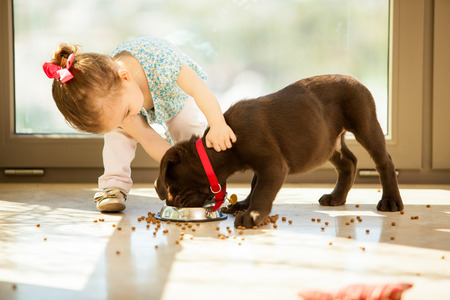 Beautiful little girl watching her puppy eat in the living room