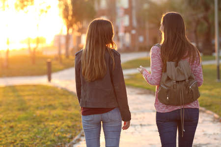 Back view of two friends walking together in a park at sunrise with a warm light in the background