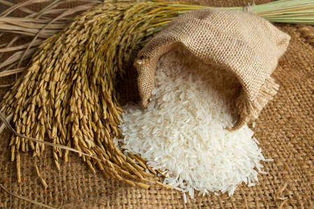 Photo for white rice in burlap sack with rice grain - Royalty Free Image