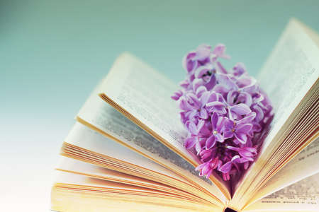Photo for Vintage romantic background with old book, lilac flower, and little seashell - Royalty Free Image