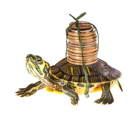 Photo for Funny turtle carrying a stack of money savings to the bank - Royalty Free Image