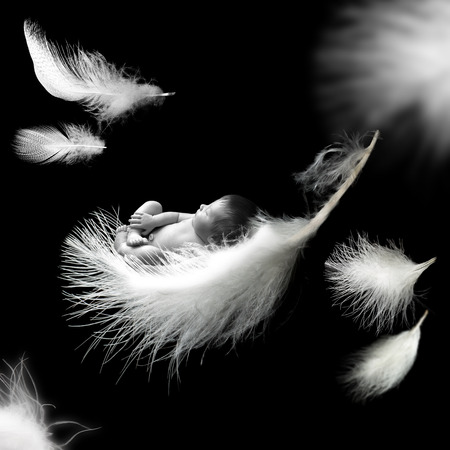 Photo for Newborn baby sleeping on white feathers - Royalty Free Image