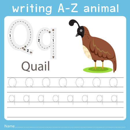 Ilustración de Illustrator of writing a-z animal q quail - Imagen libre de derechos