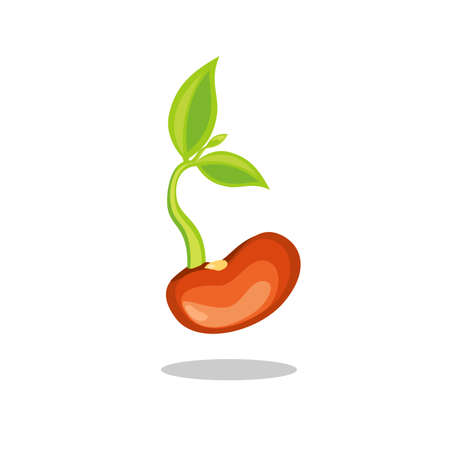 Ilustración de Simple sprouting seed drawing. Green cartoon sprout vector illustration. - Imagen libre de derechos