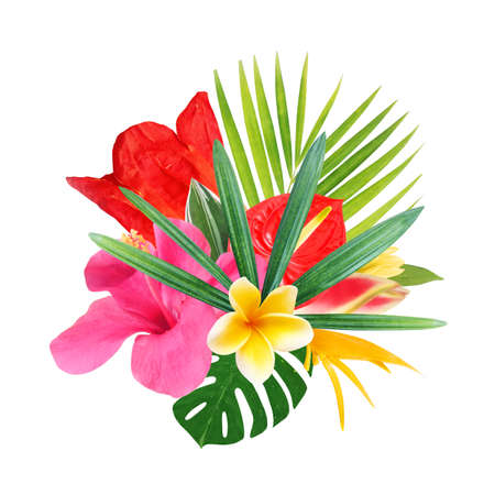 Photo pour tropical flowers on a white background - image libre de droit
