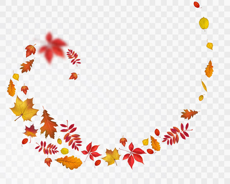 Illustration pour Bright autumn leaves spiral on transparent background. Vector nature illustration for your fall design - image libre de droit