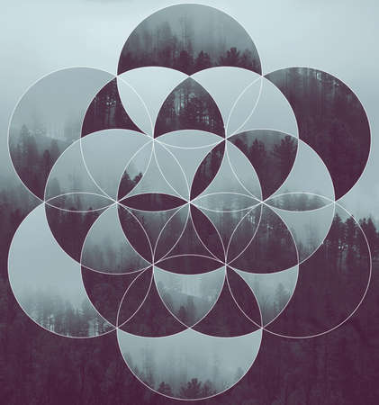 Photo pour Abstract background with the image of the forest and the flower of life. Harmony, spirituality, unity of nature. Collage, mosaic. - image libre de droit