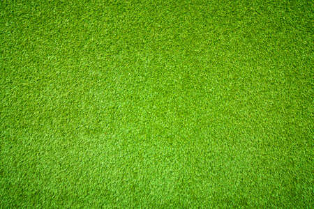 Foto de Natural background of green grass - Imagen libre de derechos