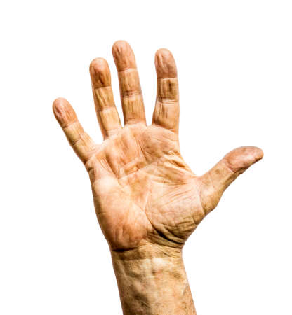 Photo pour Working man dirty rough hand isolated on white background - image libre de droit