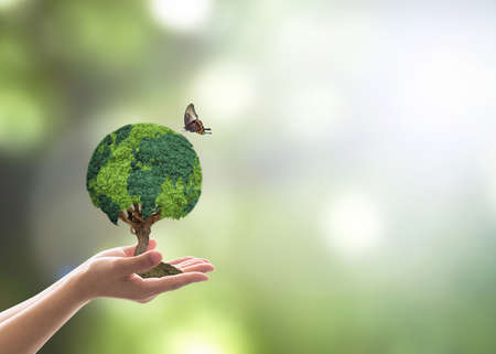 Photo pour Green globe tree on volunteer's hand for sustainable environment and natural conservation  in CSR concept - image libre de droit