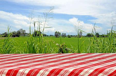 Photo pour Outdoor Picnic Background with Picnic Table. - image libre de droit