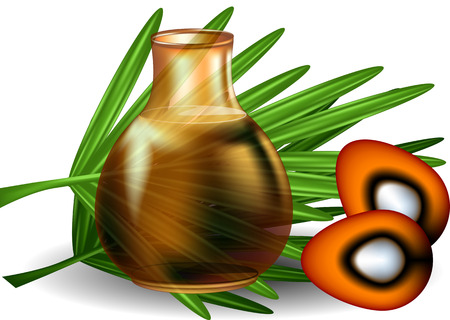 Illustration for palm oil with palm leaves on white background - Royalty Free Image