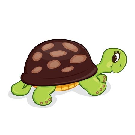 Cartoon turtle illustration