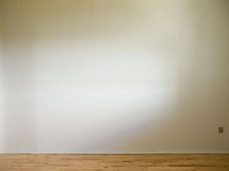 white wall with wooden floor and daylight from the side