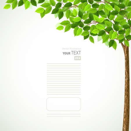Illustration pour Season tree with green leaves  - image libre de droit