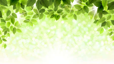 Ilustración de Summer branch with fresh green leaves  - Imagen libre de derechos