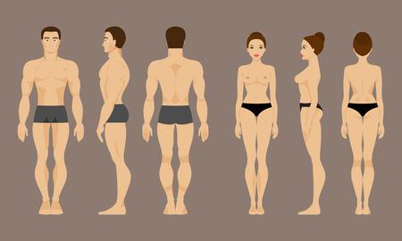 Ilustración de Male and female anatomy. Front, back and side views - Imagen libre de derechos