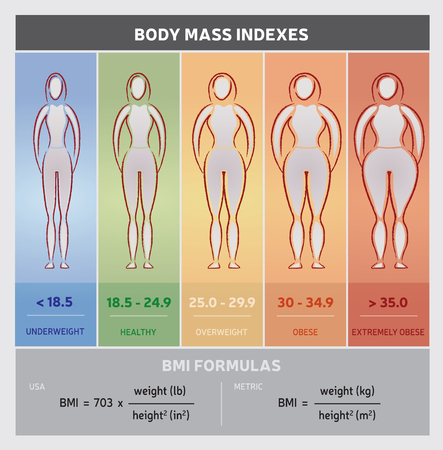 Illustration pour Body Mass Index Diagram Graphical Chart with Body Silhouettes, Five Classes and Formulas - image libre de droit