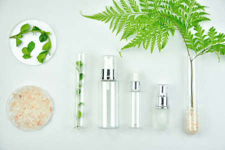 Photo pour Cosmetic bottle containers with green herbal leaves, Blank label package for branding mock-up, Natural organic beauty product concept. - image libre de droit