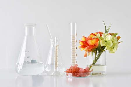 Foto de Natural organic and scientific glassware, Alternative herb medicine, Natural skin care beauty products, Research and development concept. - Imagen libre de derechos