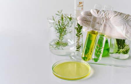 Foto de Natural medicine development in laboratory, Scientist researches and experiment green herbal extraction. - Imagen libre de derechos