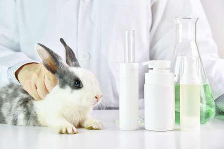 Foto de Scientist testing on rabbit animal in chemical laboratory, Cruelty free cosmetics beauty product concept. - Imagen libre de derechos