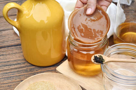 Photo for Scoby, Hand holding tea mushroom with kombucha tea, Healthy fermented food, Probiotic nutrition drink for good balance digestive system. - Royalty Free Image