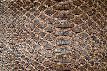 brown crocodile texture