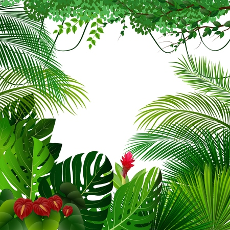 Ilustración de Vector illustration of Tropical jungle - Imagen libre de derechos