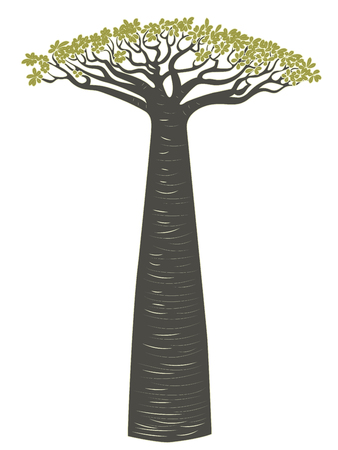 Illustration pour Stylized baobab tree, abstract tree silhouette design illustration. - image libre de droit
