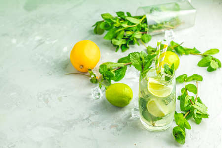 Foto de Mojito cocktail with lime and mint in highball glass on a gray and green concrete stone surface background. With copy space for your text - Imagen libre de derechos