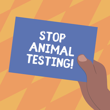 Text sign showing Stop Animal Testing. Conceptual photo scientific experiment which live animal forced undergo Drawn Hu analysis Hand Holding Presenting Blank Color Paper Cardboard photo