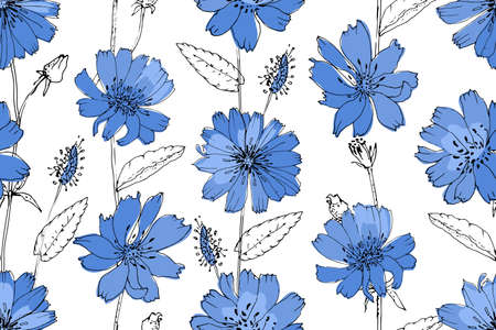 Illustration for Art floral vector seamless pattern. Blue succory (chicory) on white background. Isolated vector flowers, leaves and buds. - Royalty Free Image