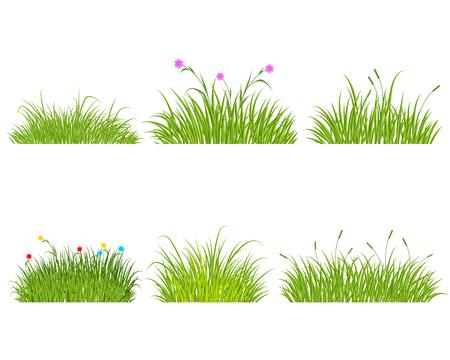 Ilustración de Vector illustration of a six green grass set - Imagen libre de derechos