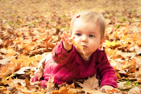 Photo for Cute baby girl playing with leaves in autumn - Royalty Free Image
