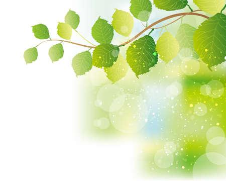 Ilustración de green leaves background - Imagen libre de derechos