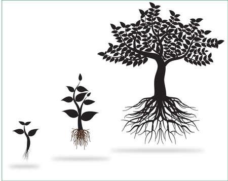 Illustration pour tree 0221 - image libre de droit