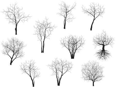 Illustration for Collection of trees silhouettes - Royalty Free Image