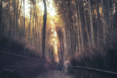 Foto de Path to bamboo forest with blurred tourists in Arashiyama, Kyoto - Imagen libre de derechos