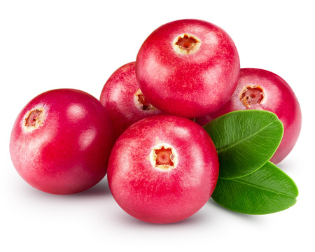 Photo for cranberries isolated on white Clipping Path - Royalty Free Image