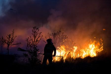 Foto de Firefighter fighting bush fire in the evening. - Imagen libre de derechos