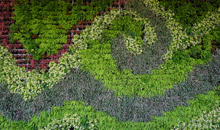 Photo for Variety of plants in vertical garden texture wall in wave shape - Royalty Free Image