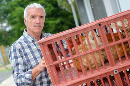Photo pour Farmer holding plastic crate containing chickens - image libre de droit