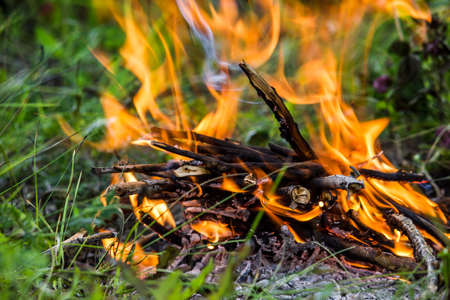 Photo pour The fire in the green grass. A fire in the woods. Barbecue on the nature, picnic. - image libre de droit