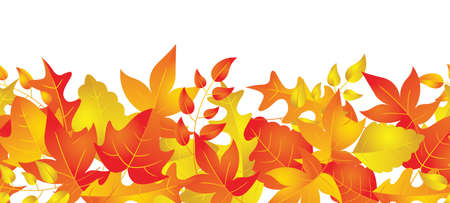 A horizontally repeatable border depicting an autumn leaf pattern