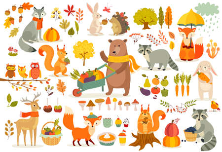Illustration pour FAll theme set, forest Animals hand drawn style. Vegetables, trees, leaves, food for harvest festival or Thanksgiving day. Cute autumn charactrs - bear, fox, raccoon, squirel. Vector illustration. - image libre de droit