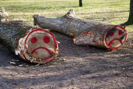 Photo for felled tree trunks with sad smiley face graffiti sprayed on them with red paint - Royalty Free Image