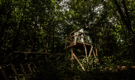 Photo pour A secluded hunting blind in the woods, Atlas County, Michigan. - image libre de droit