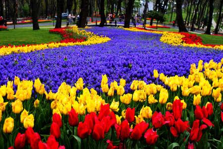 Foto für the historical city of Istanbul has a distinctive beauty of tulip time. - Lizenzfreies Bild
