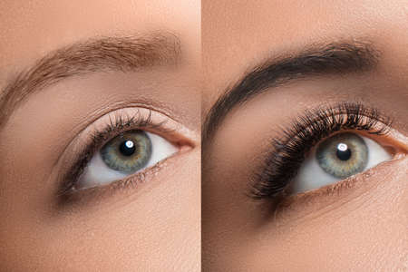 Foto de Comparison of female eyes after eyelash extension and eyebrow correction - Imagen libre de derechos